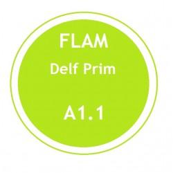 FLAM DELF Prim A1.1